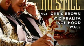 DJ Khaled – I'm Still Ft. Chris Brown, Wale, Wiz Khalifa & Ace Hood