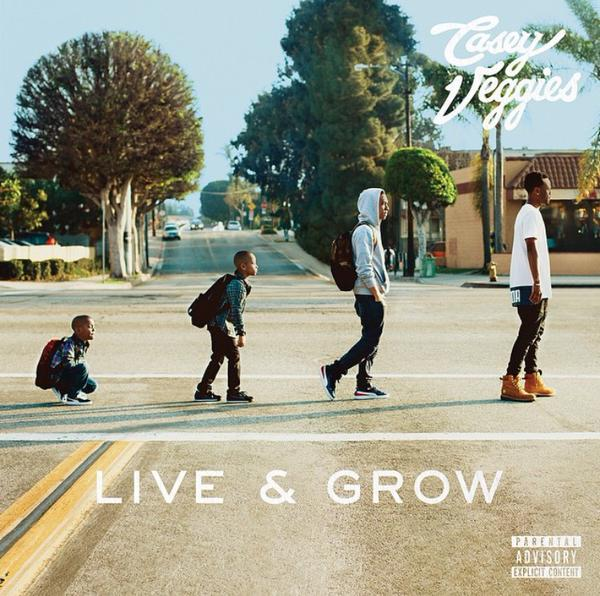 Casey Veggies album